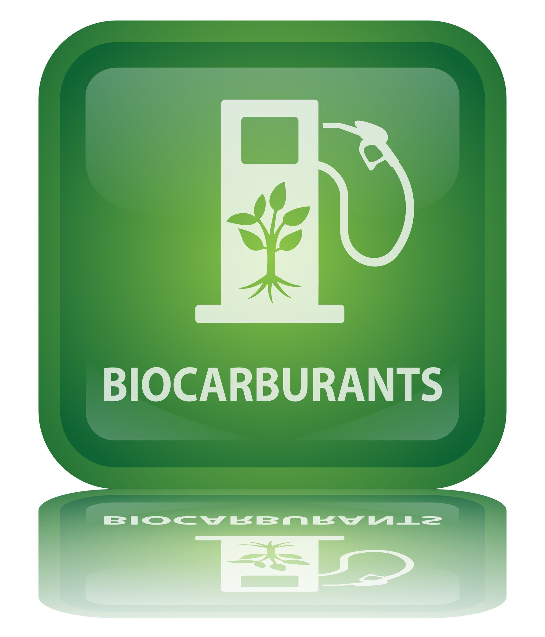 Biocarburants